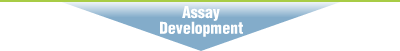 Assay Development