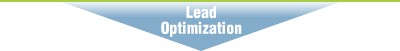 Lead Optimization